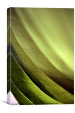 Abstract Leaf, Canvas Print