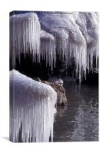 Curtain of Icicles, Canvas Print