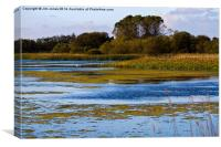 Big Waters Nature Reserve, Newcastle upon Tyne, Canvas Print