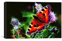 Electric Peacock Butterfly, Canvas Print