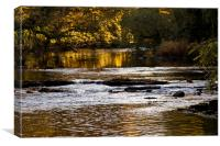 River of gold, Canvas Print