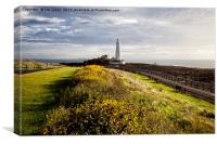 Wild flowers and St Mary's, Canvas Print