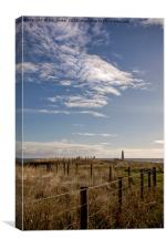 Over the field to St Mary's Lighthouse, Canvas Print