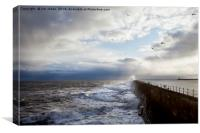 Stormy sea, sky and seagulls, Canvas Print