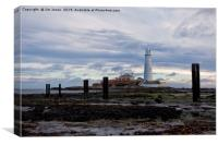 St Mary's Island at low tide., Canvas Print