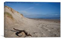 Driftwood on the beach at Druridge Bay, Canvas Print