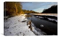 Winter's day near the Seaton Burn (2), Canvas Print