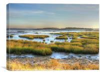 Across the Marsh, Canvas Print