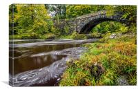 Beaver Bridge, Canvas Print