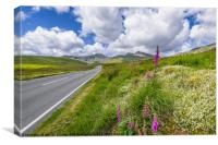Road To Snowdon Mountain, Canvas Print