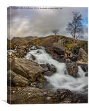 River Mountain Snowdonia, Canvas Print