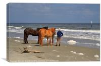 Horses onthe Beach, Canvas Print