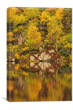 Reflections of Autumn, Canvas Print