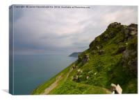 The South West Coast Path at Valley of the Rocks, , Canvas Print