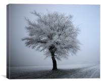 Hoar on the tree, Canvas Print