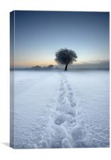 Tracks in the snow, Canvas Print