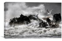 Stormy sea's , Canvas Print