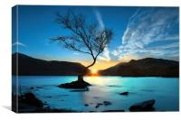 Lynn Padarn lone tree, Canvas Print