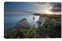 Freshwater Bay Sunset, Canvas Print