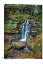 Wharnley Burn Waterfall, Canvas Print