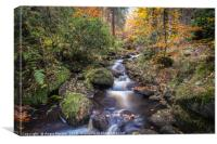 Wyming Brook Autumn Landscape, Canvas Print