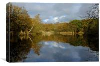 Epping Forest Lake , Canvas Print