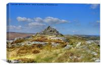 Chinkwell Tor, Canvas Print