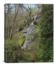 Lady Exmouth's   Falls, Canvas Print