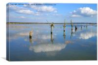 Tollesbury Marshes at High Tide, Canvas Print