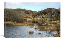 Haytor quarry, Canvas Print