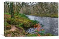 On the banks of the River Dart, Canvas Print