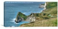 Man O' War Bay and the Jurassic Coast, Canvas Print