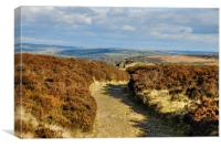 Haworth from the moors, Canvas Print