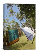 Clothes washing line in Kerala Jungle, Canvas Print