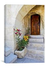Past the flowerbeds up the steps, Canvas Print