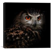 Eagle Owl with Glowing Eyes, Canvas Print