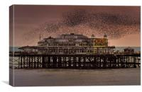 West Pier Starlings, Brighton, Canvas Print