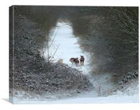 Dogs in Snow, Canvas Print