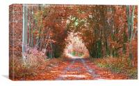 AUTUMN COLOURS, Canvas Print