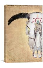 Indian Cow Skull #2, Canvas Print