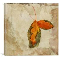A Touch of Autumn #2, Canvas Print