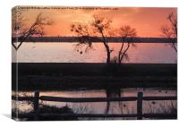 Sunset Silhouettes, Canvas Print