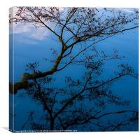 Branch over water, Canvas Print