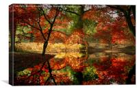 Autumn Spectacle , Canvas Print