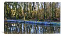 Frosty,woodland reflections, Canvas Print
