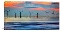 Windmills to the Horizon , Canvas Print