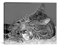 Best of Friends, Canvas Print