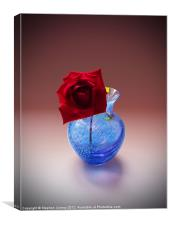 Single Red Rose, Canvas Print