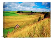 Farm Building with Red Door, Canvas Print