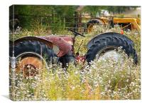 Tractor in field, Canvas Print